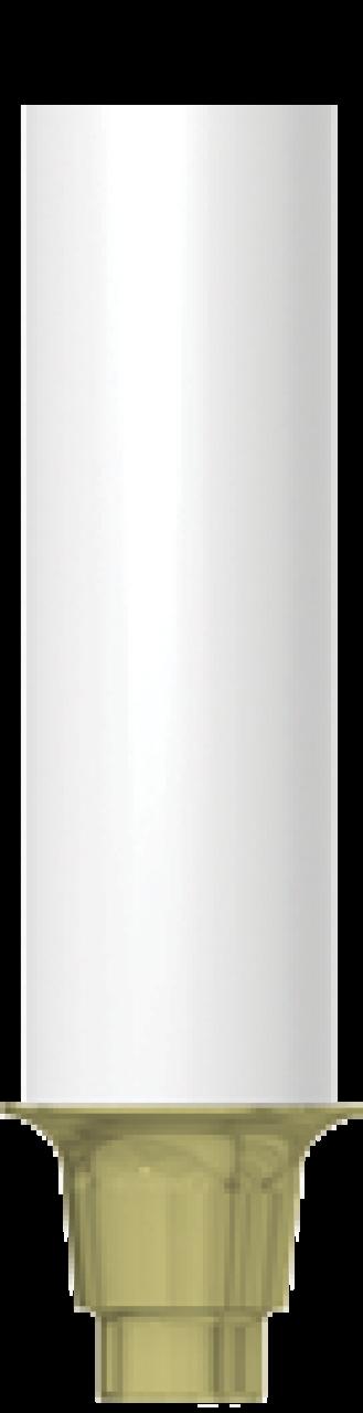 CN-GP010